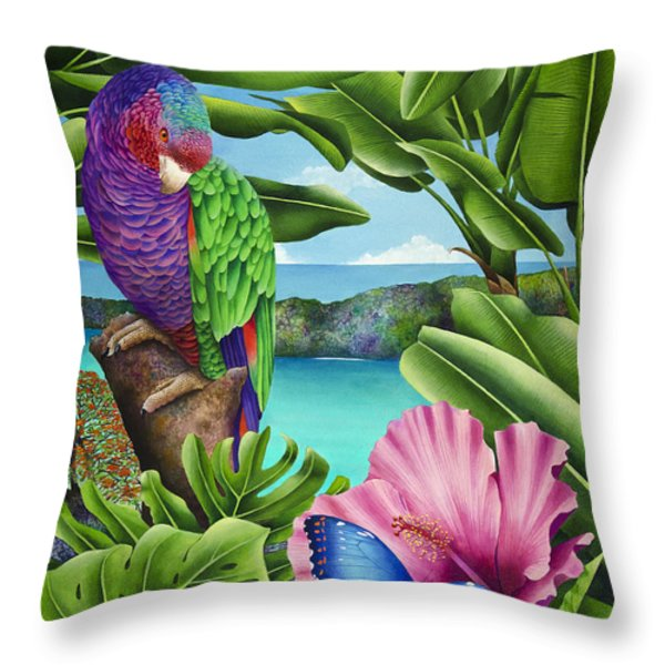 Butterfly Effect Throw Pillow by Carolyn Steele