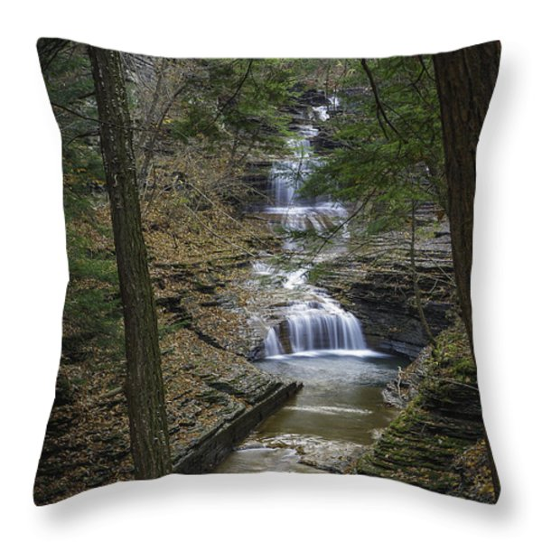 Buttermilk Falls in Autumn III Throw Pillow by Michele Steffey
