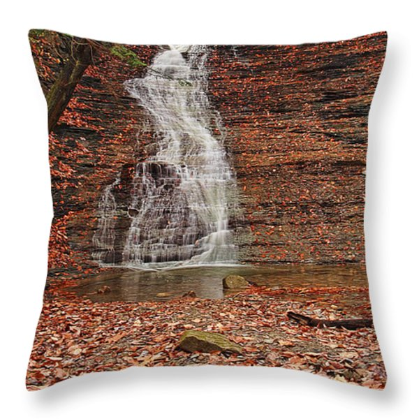 Buttermilk Falls Throw Pillow by Marcia Colelli