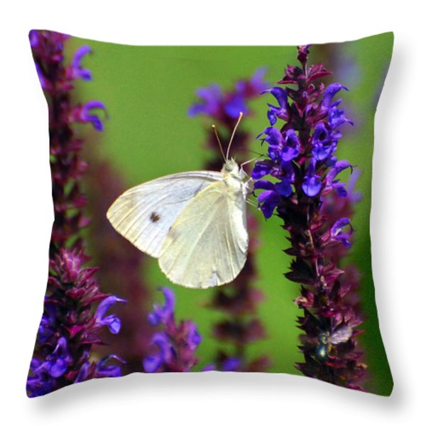 Cabbage White Butterfly Throw Pillow by Christina Rollo
