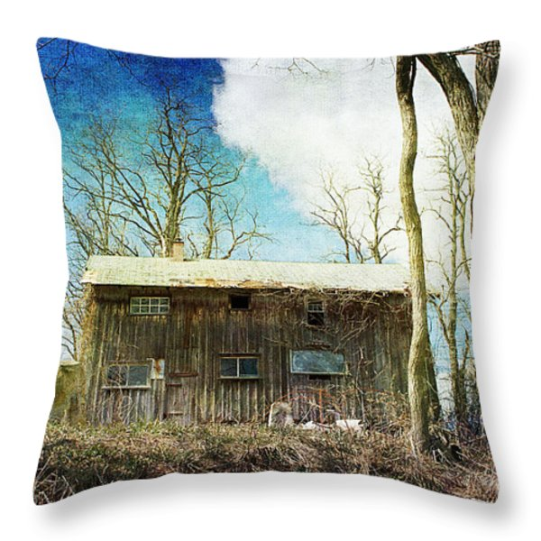 Cabin Fever Throw Pillow by A New Focus Photography