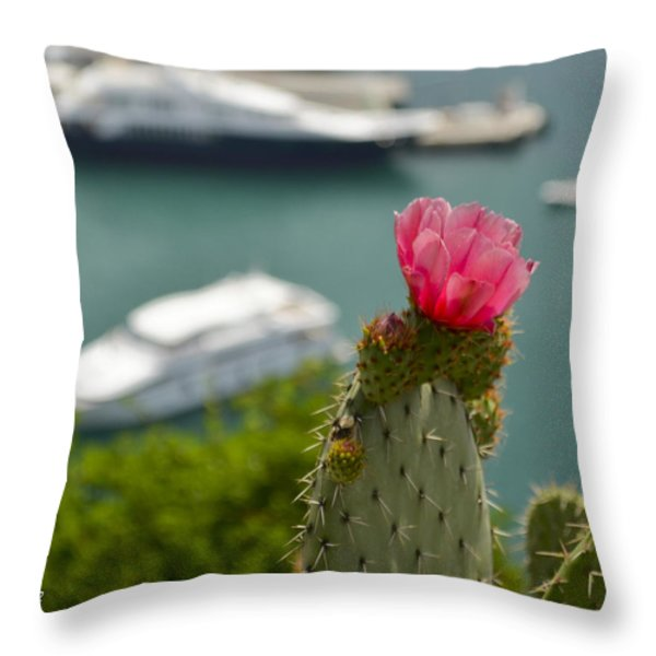Cactus Flower Above The Port Of Nice Throw Pillow by Allen Sheffield