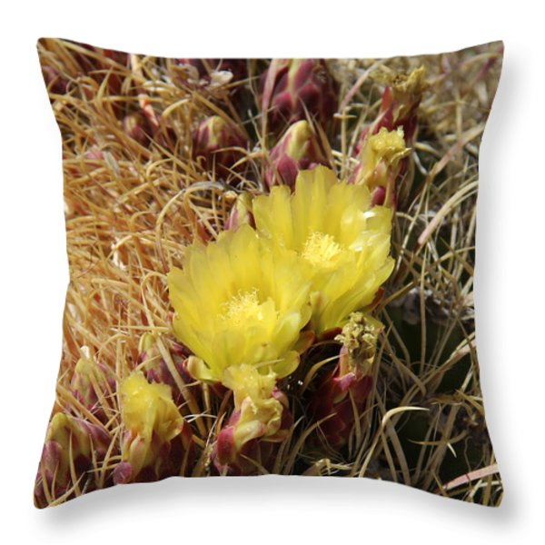 Cactus Flower In Bloom Throw Pillow by Mike McGlothlen