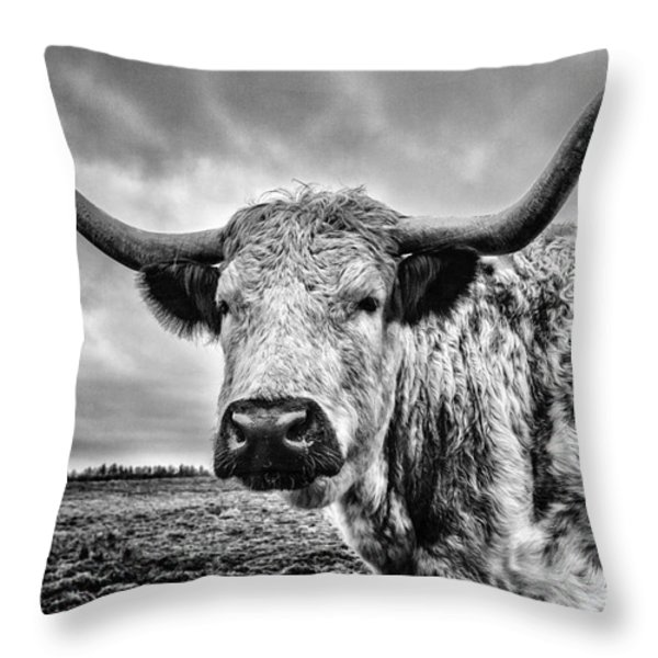 Cadzow White Cow Throw Pillow by John Farnan