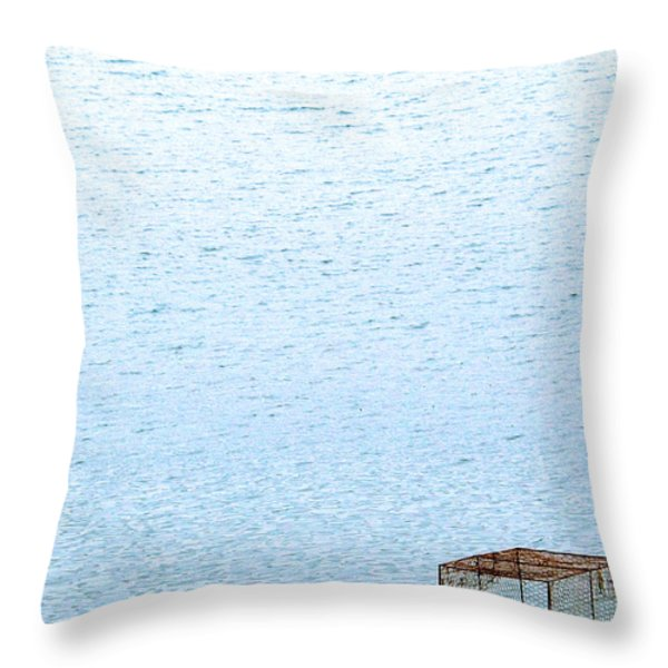 Caged Expanse Throw Pillow by Justin Woodhouse