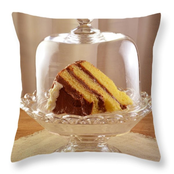 Artist Who Throws Cake : Layer Cake Throw Pillows for Sale