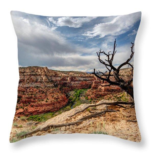 Calf Creek Throw Pillow by Dustin  LeFevre