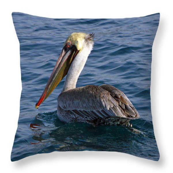 California Brown Pelican Throw Pillow by Shoal Hollingsworth