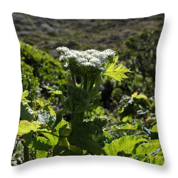 California Coast Hillside Flower 5d22613 Throw Pillow by Wingsdomain Art and Photography