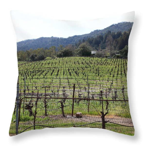 California Vineyards In Late Winter Just Before The Bloom 5D22088 Throw Pillow by Wingsdomain Art and Photography