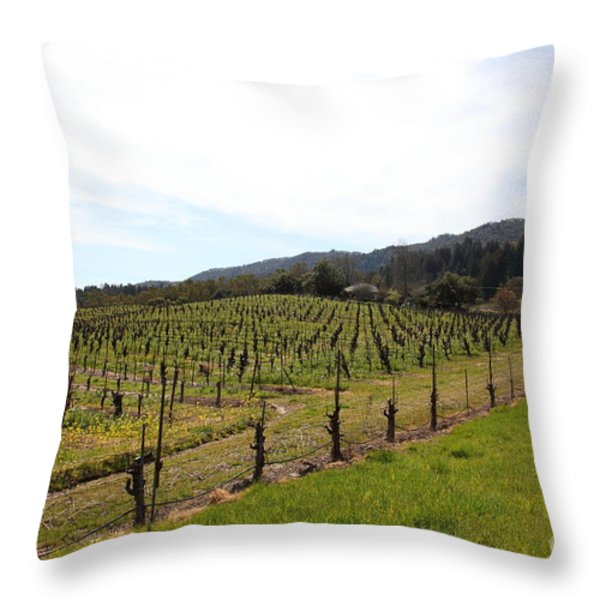 California Vineyards In Late Winter Just Before The Bloom 5D22114 Throw Pillow by Wingsdomain Art and Photography