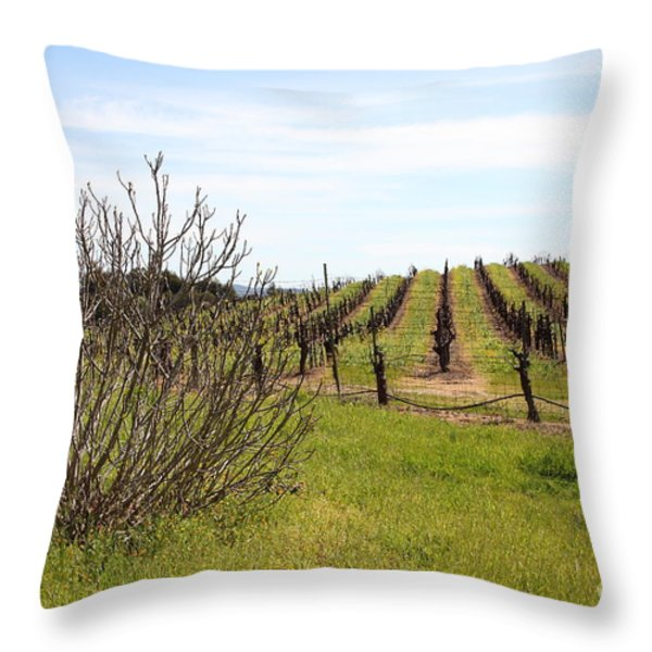 California Vineyards In Late Winter Just Before The Bloom 5d22121 Throw Pillow by Wingsdomain Art and Photography