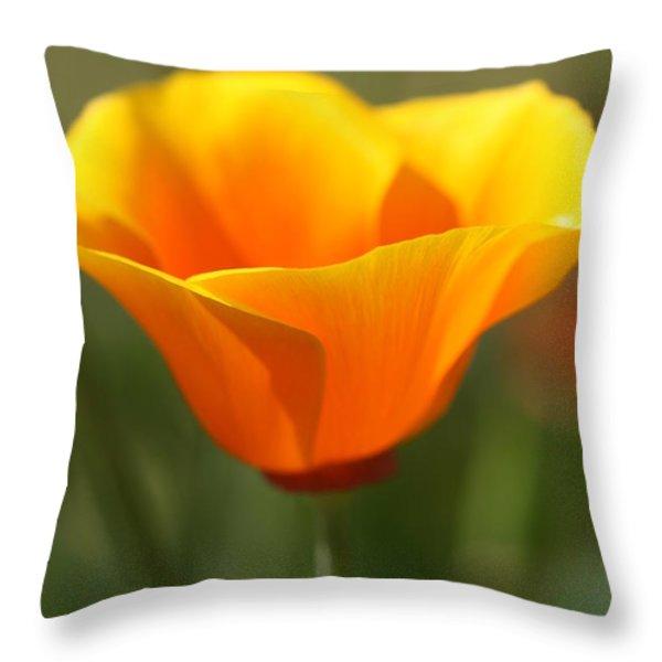 Californian Poppy Throw Pillow by Joy Watson