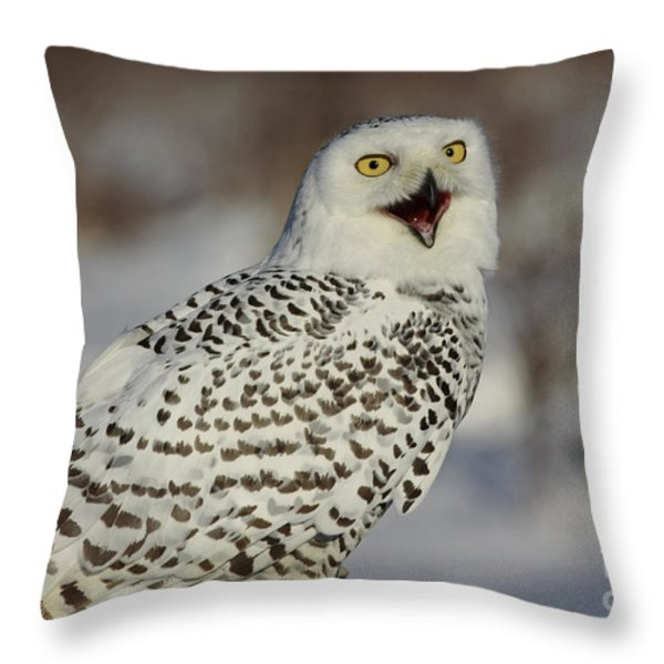Call of the North - Snowy Owl Throw Pillow by Inspired Nature Photography By Shelley Myke