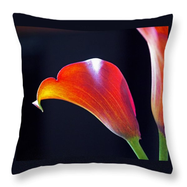 Calla Colors and Curves Throw Pillow by Rona Black