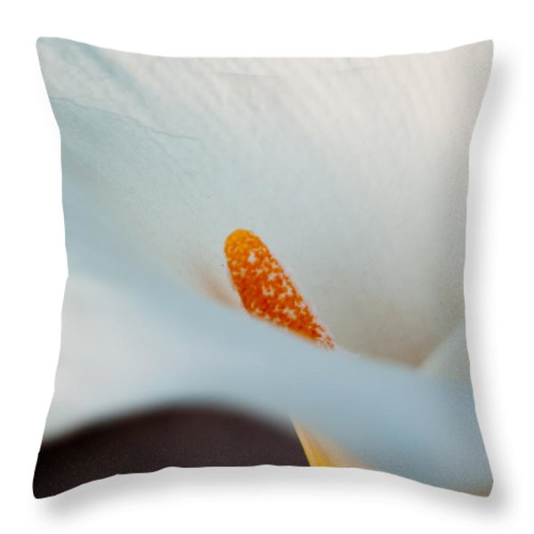 Calla Lily II Throw Pillow by Bill Gallagher