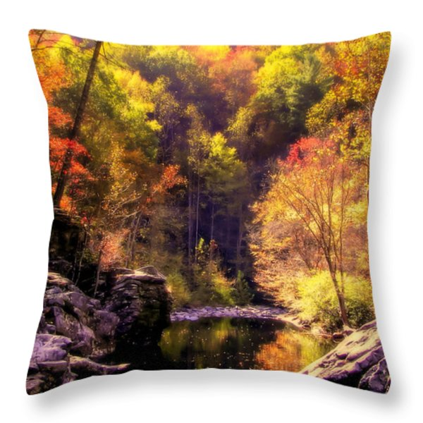 Calling Me Home Throw Pillow by Karen Wiles