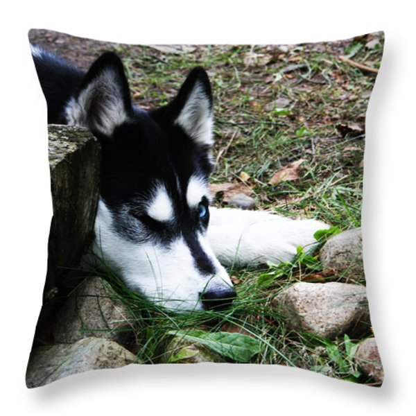 Calm and Comfy Throw Pillow by Jamie Lynn