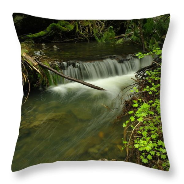 CALM RAPIDS Throw Pillow by Jeff  Swan