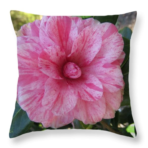 Camellia Japonica II Throw Pillow by Zina Stromberg
