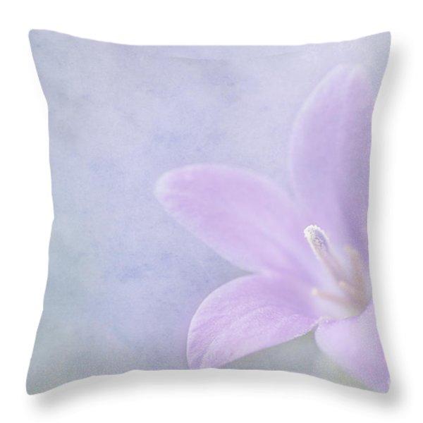 Campanula portenschlagiana Throw Pillow by John Edwards