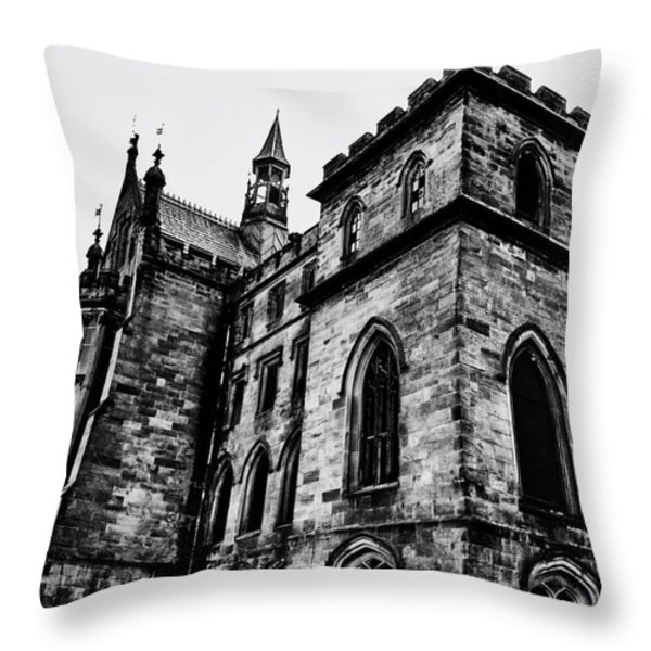 Can You Hear Me Throw Pillow by Michael Braham
