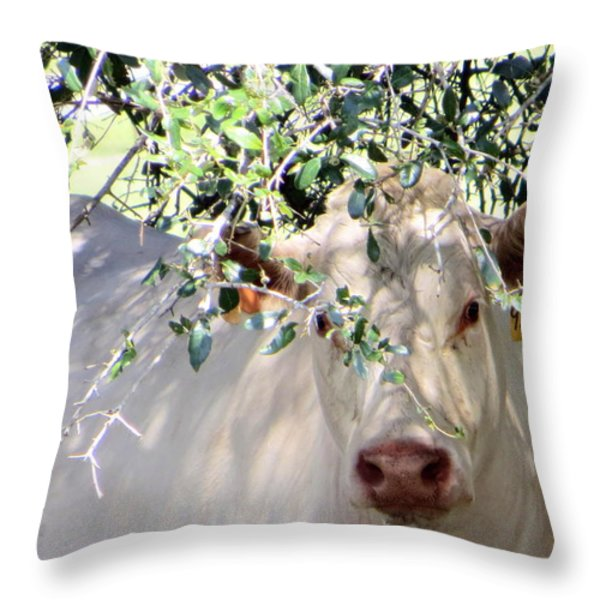 Can You See Me Now? Throw Pillow by Dorothy Menera
