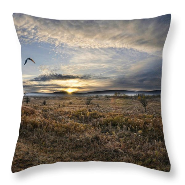 Canaan Valley In Morning Throw Pillow by Dan Friend