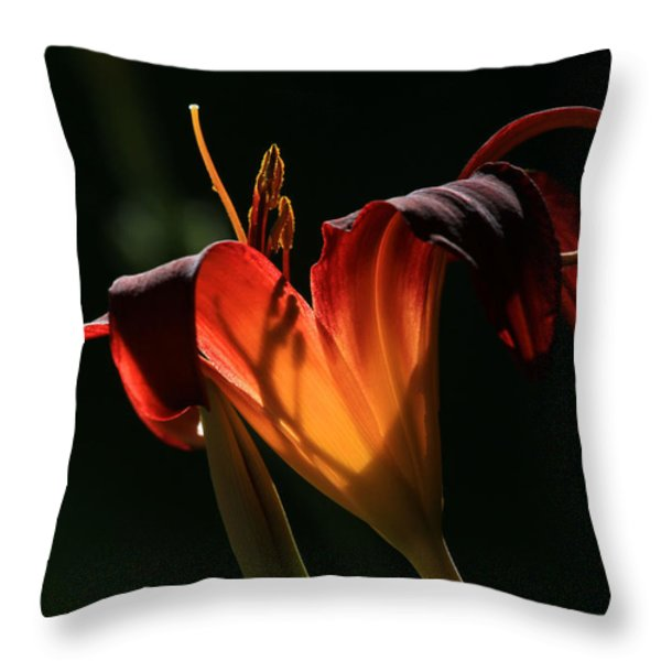 Candle In The Wind Throw Pillow by Donna Kennedy
