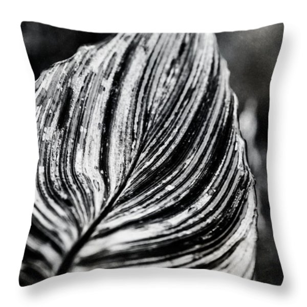 Canna Leaf Throw Pillow by Venetta Archer
