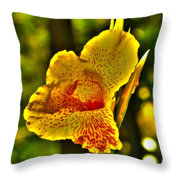 Canna Wow Throw Pillow by Kim Pate