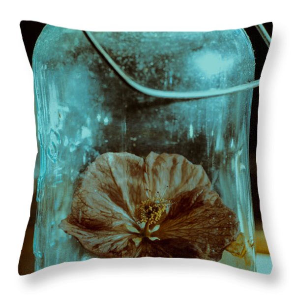 Canned Spring Throw Pillow by Susan Capuano