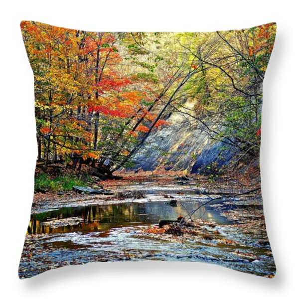 Canopy of Color IV Throw Pillow by Frozen in Time Fine Art Photography