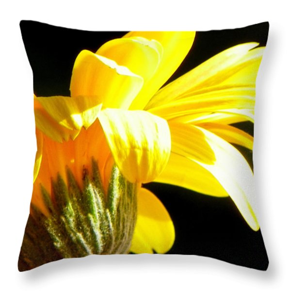 Canopy of Petals Throw Pillow by KAREN WILES