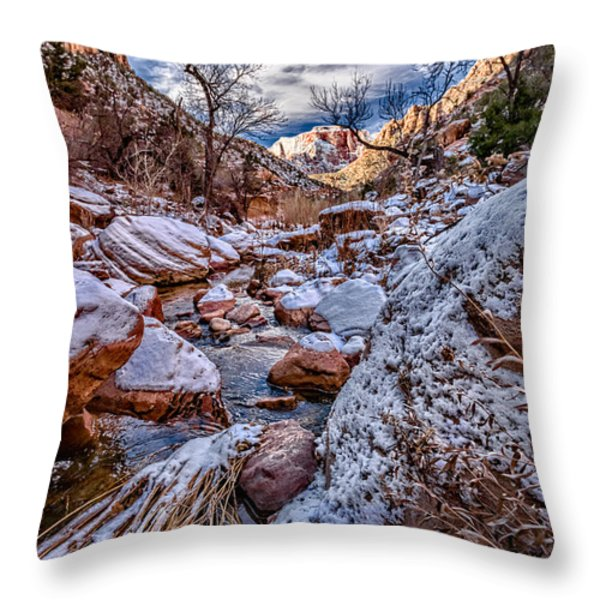 Canyon Stream Winterized Throw Pillow by Christopher Holmes