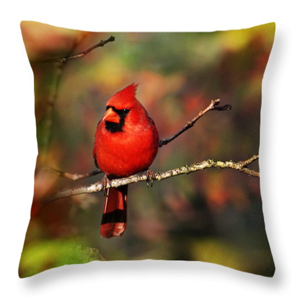 Cardinal Territory Throw Pillow by Christina Rollo