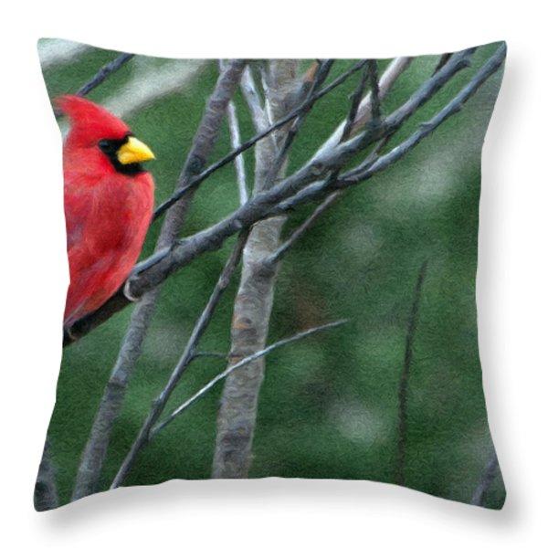 Cardinal West Throw Pillow by Jeff Kolker
