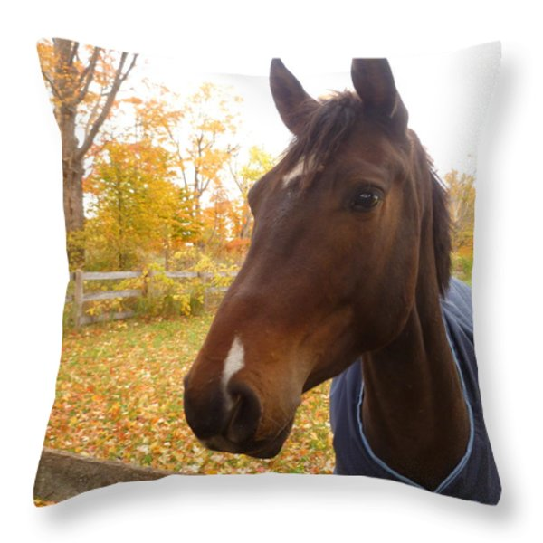 Care Free Country Throw Pillow by Lingfai Leung