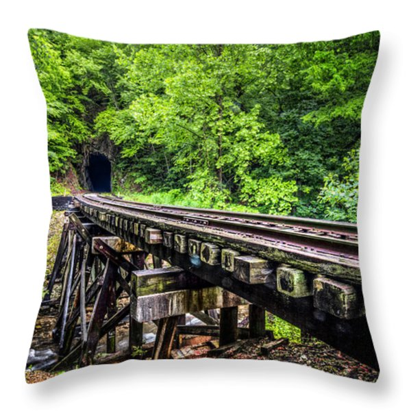 Carolina Railroad Trestle Throw Pillow by Debra and Dave Vanderlaan