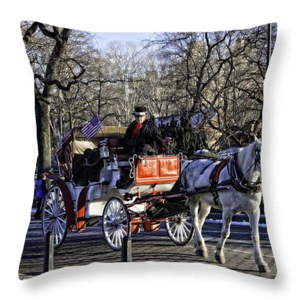 Carriage Driver - Central Park - NYC Throw Pillow by Madeline Ellis