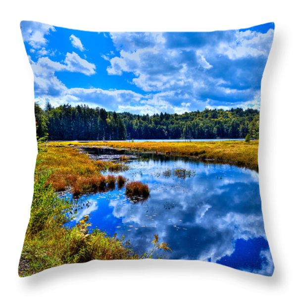 Cary Lake near Old Forge New York Throw Pillow by David Patterson
