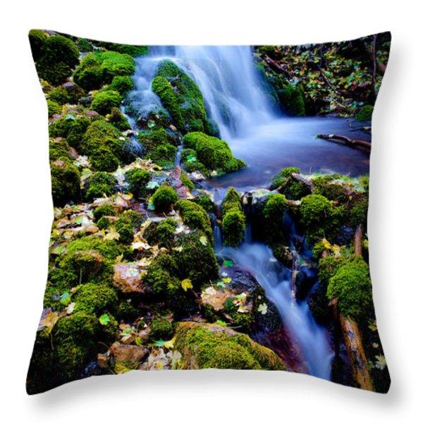 Cascade Creek Throw Pillow by Chad Dutson