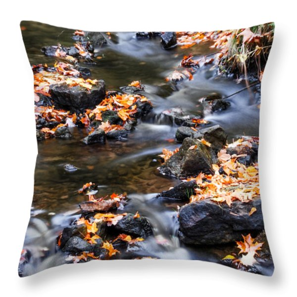 Cascading Autumn Leaves On The Miners River Throw Pillow by Optical Playground By MP Ray