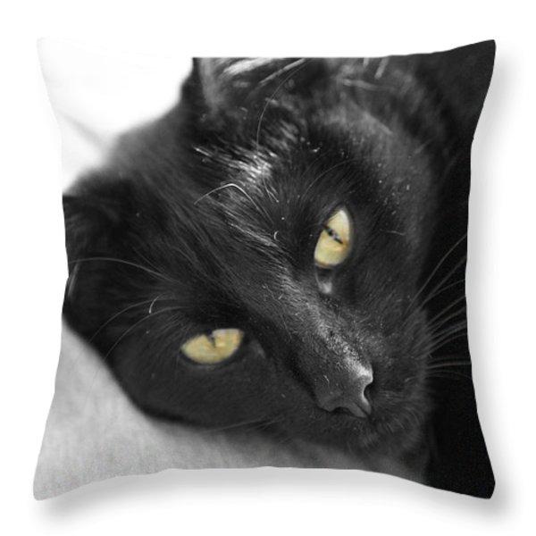 Caspian Throw Pillow by Amanda Barcon