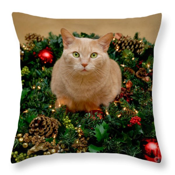 Cat And Christmas Wreath Throw Pillow by Amy Cicconi