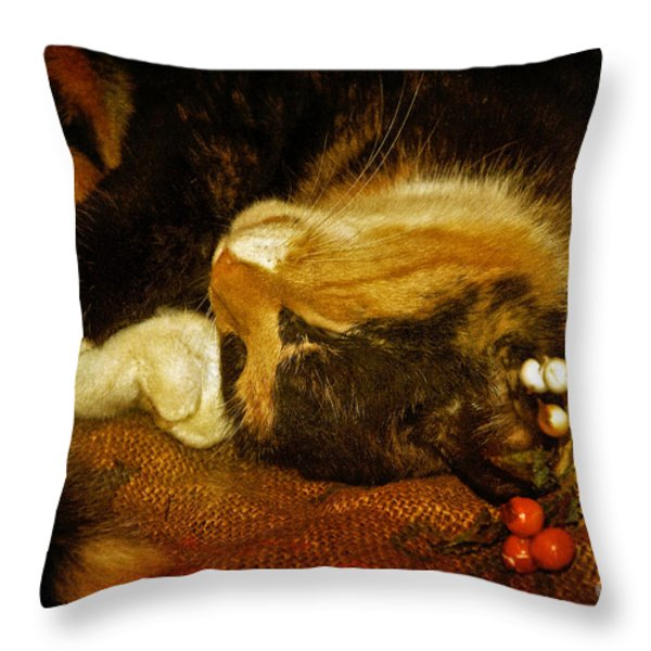 Cat Catnapping Throw Pillow by Lois Bryan