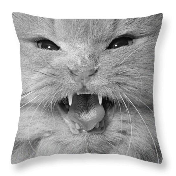 Cat Close-up Throw Pillow by Richard Frieman