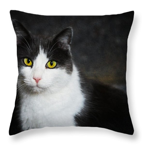 Cat Portrait With Texture Throw Pillow by Matthias Hauser