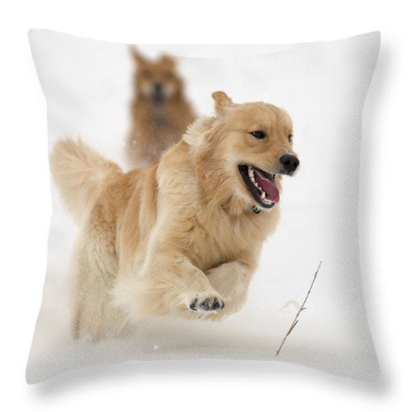 Catch Me If You Can Throw Pillow by Vic Harris