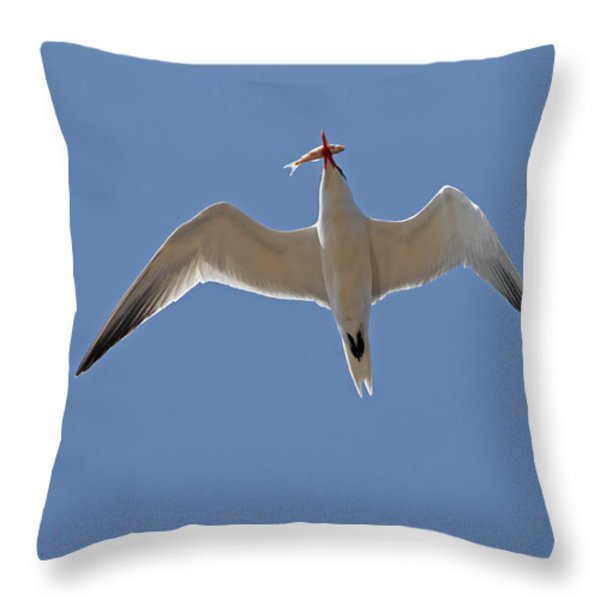 Catch Of The Day Throw Pillow by Jim Nelson
